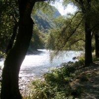 Абхазия :: Надежда Ужанова