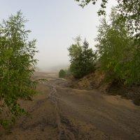 Реки из песка. :: Яков Реймер