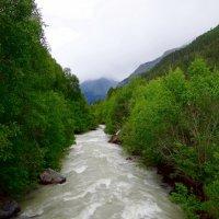 Горная река. :: Ольга