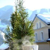 Альпы зимой :: Елена