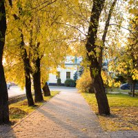 Осенний сад. :: Ольга Абр