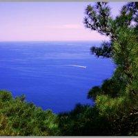 У Черного моря :: ABC CAB