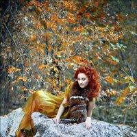 Осенний лес :: Анастасия Сандык