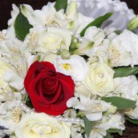 букет невесты :: анна