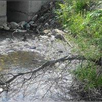 Горный ручей под мостом :: Вика Тихонова