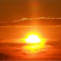 Яркое закатное солнце :: Вика Тихонова