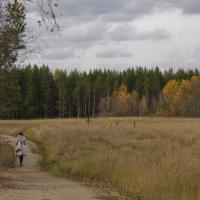 В мокрой цветной рубахе, осень по бездорожью бродит..... :: Alent Vink