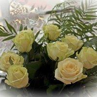 белые розы..ю :: Надежда Шемякина