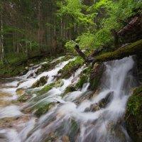 Поздняя весенняя вода :: Роман Раевский