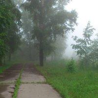 Туман :: Ser Gun ...