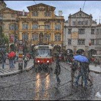 Дождливый день :: Виталий Внимательный.