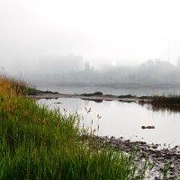 Город в тумане. :: Юрий Кущ