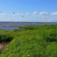 ветра... :: swa _