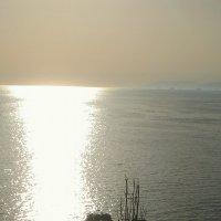Солнечная дорожка :: Фокша Фокина
