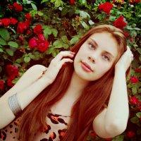 розы :: Арина Бокун