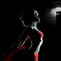 ночной портрет :: сергей коник