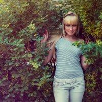 Лето :: Irina Evushkina