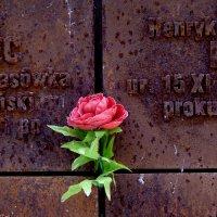 Memorial in Katyn, Smolensk :: PersONA Incognito