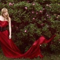 Красная королева :: Мария Батина