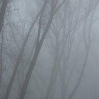 Лавочка в тумане :: Вячеслав Гудзенко