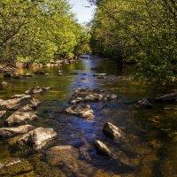 Вода и камни :: Андрей Розов
