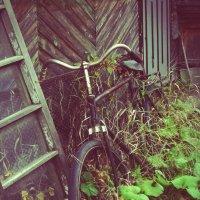 Велосипед :: Nostromo ***