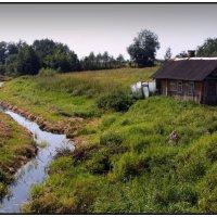 Домик в деревне :: Николай Авсеев