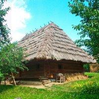 домик в деревне :: Яна Панасюк