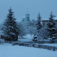 Зимнее утро :: Наталья Володькова