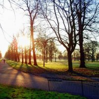 Утро в лондонском парке. :: Роман Королёв