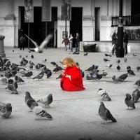Девочка и голуби. :: Роман Королёв