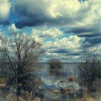 Весна, холодно :: Александр Шмалёв