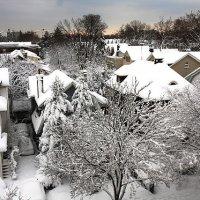 Рассвет зимой :: Galina Kazakova