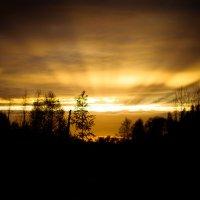 Солнце не просит взамен, оно дарит себя без остатка :: Константин Онисько