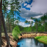 река Туросна (Тверская область) :: Марина Белецкая