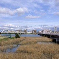 Осака :: Swetlana V
