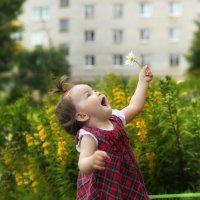 маленькое солнышко :: Ольга Гребенникова