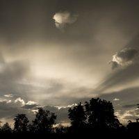 После дождя :: Андрей Батранин