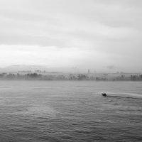 В туман :: Ларсен Кивалин