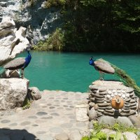 Голубое озеро :: Ирина Егорова