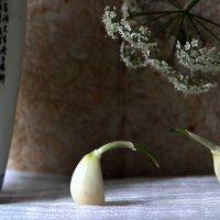 Встречая с любимым закат В уютном тихом идзакая, Не ешьте чеснок и васаби (хокку) :: veilins veilins