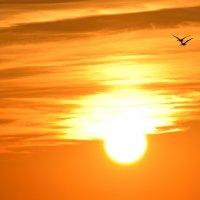 выше солнца :: Laimis S