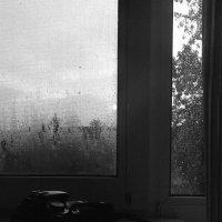 Во время дождя :: Дмитрий
