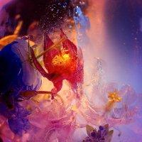 свет и цвет :: Александр Шахмин