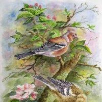 Птицы :: rv76