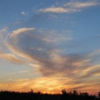 Улетающий закат :: Николай Масляев