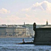 вид на Дворцовую набережную с Петропавловки :: Елена