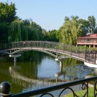 Лето в парке :: Валерий Чернов