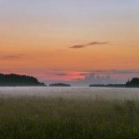 Как-то утром на рассвете... :: cfysx