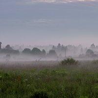 Утро туманное :: Galina